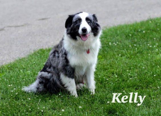 Kelly_5096